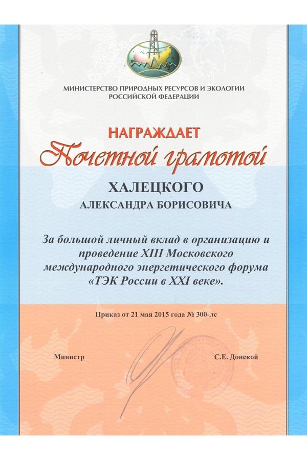 Почетная грамота Халецкому «ТЭК России в XXI веке»